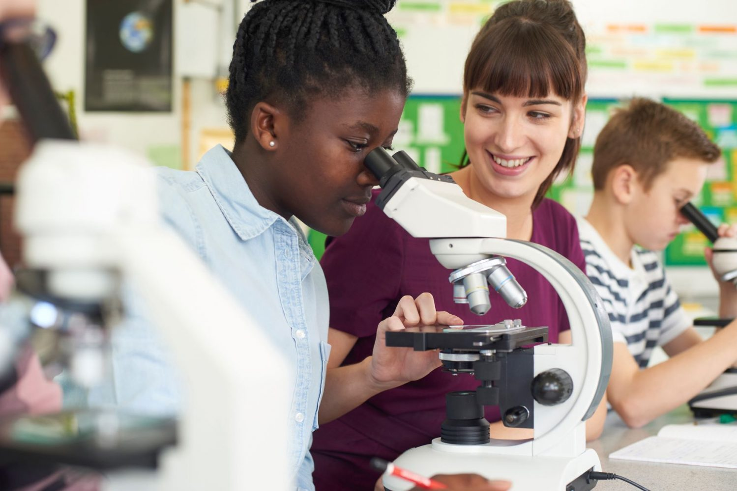 biology curriculum resources